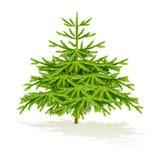 Święta moje portfolio drzewna wersja nosicieli Obrazy Royalty Free
