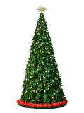 Święta moje portfolio drzewna wersja nosicieli Obraz Stock