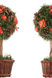 Święta obramiają mini drzewa Obrazy Stock
