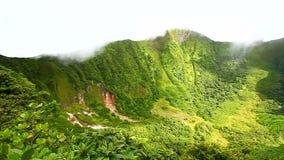 Świętego Kitts tropikalnego lasu deszczowego krater zbiory wideo