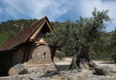Świętego Paraskevi kościół przy wioską Askas w Cypr Zdjęcia Royalty Free
