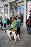 Świętego Patrick ` s dnia świętowanie w Moskwa Obrazy Royalty Free