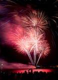 Świętowanie fajerwerki Zdjęcia Royalty Free