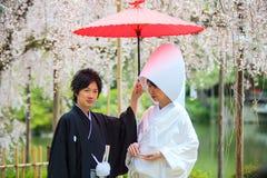 Świętowanie typowy ślub w Japonia Fotografia Royalty Free