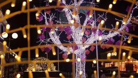 Świętowanie zaświeca drzewa zbiory