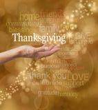 Świętuje dziękczynienie