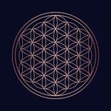 Święty geometria groszaka mandala okręgu projekt ilustracji
