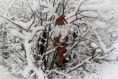 Święty Mikołaj w drzewnym śniegu ogródzie Obrazy Stock