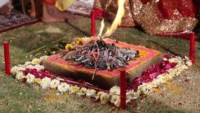 Święty ogień przy tradycyjnym hinduskim ślubem w Jodhpur zdjęcie wideo