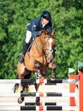 ŚWIĘTY PETERSBURG-JULY 05: Jeździec Aleksandr Belekhov na kojocie Ugl Zdjęcia Royalty Free