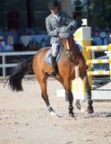 ŚWIĘTY PETERSBURG-JULY 05: Jeździec Gunnar Klettenberg na Ulrike R ja Zdjęcia Royalty Free