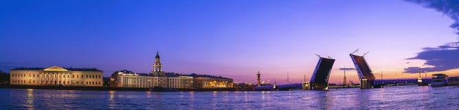 Święty Petersburg Rosja fotografia royalty free