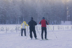 Święty Petersburg, Rosja Styczeń 06, 2015: Ludzie narciarstwa w zima lesie Zdjęcia Stock