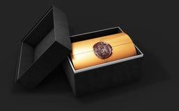 Świadectwo szablon z luksusu pudełkiem, dyplom, 3d ilustracja, Zdjęcia Stock