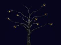 światła żarówki drzewo. Fotografia Royalty Free