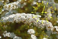 Światła dziennego oszczędzania czas DST Ścienny zegar iść zima czas obrazy stock