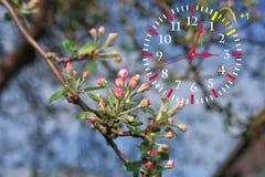 Światła dziennego oszczędzania czas DST Ścienny zegar iść zima czas zdjęcie royalty free
