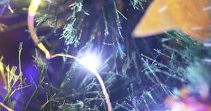 Światła na choince zbiory