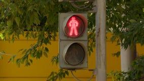 Światła ruchu dla pedestrians na ulicie na letnim dniu na tle zielony ulistnienie drzewa zbiory