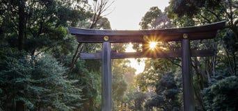 Światła słonecznego jaśnienie przez Torii drewnianej bramy Meiji świątynia Meij Zdjęcie Stock