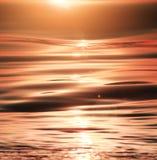 Światła słonecznego morza iskrzaste fala Obraz Royalty Free