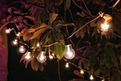 Światła w ciemności Zdjęcia Royalty Free