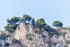 Światło dzienne widok od dna kołysać góry z zielonymi drzewami obrazy stock