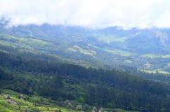 Światło i cień w dolinie z Greenery Kerala Wszystko Wokoło Naturalnym tłem - Zielona ziemia z górami i biel chmurami - obrazy royalty free