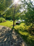 Światło i cienie jeziorem Fotografia Royalty Free