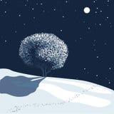 światło księżyca krajobrazowa zimy. ilustracji