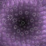 Światło kwiaty Obrazy Stock