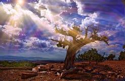 Światło leje się w skalistą pustynię Zdjęcie Royalty Free