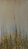 światło marmur z kwiecistym chodakiem Fotografia Royalty Free