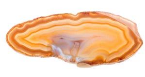 Światło - pomarańczowy agat odizolowywający na bielu Obraz Royalty Free