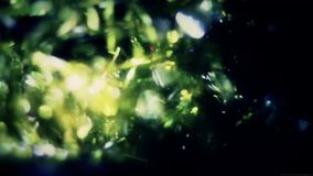 Światło przepuszcza element zbiory