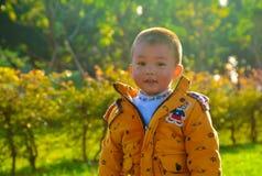 Światło słoneczne chłopiec zdjęcia stock