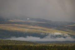 Światło słoneczne daje złotej łunie jesień barwił las podczas gdy markotne chmury okrywa krajobraz Obrazy Stock