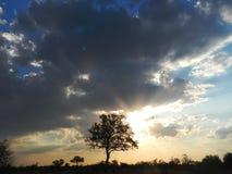 Światło słoneczne i chmury, Kruger, Południowa Afryka Zdjęcia Stock