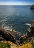 Światło słoneczne przy przylądka St ` s Maryjną Ekologiczną rezerwą Obraz Royalty Free