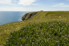 Światło słoneczne przy przylądka St ` s Maryjną Ekologiczną rezerwą Zdjęcia Royalty Free