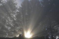 Światło słoneczne przychodzi przez mgły nad szwajcarskimi alps przy Ri obrazy royalty free