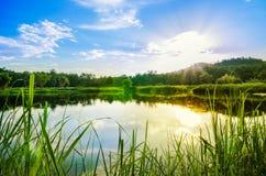 Światło słoneczne rzeka i niebieskie niebo Zdjęcie Stock