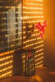 Światło słoneczne tworzy wzory na wielkim okno przez żaluzj i obraz stock