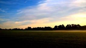 Światło słoneczne w parku Obraz Royalty Free
