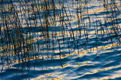 światło słoneczne woda Zdjęcia Stock