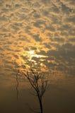 Światło słoneczne z chmurą obraz stock