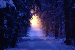 Światło w odległości Zdjęcia Royalty Free