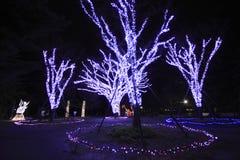 Światło widowisko w Sendai Zdjęcia Stock