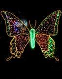 Światło zasadzony motyl obrazy royalty free