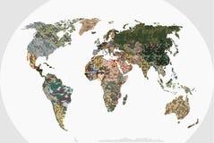 Światowa mapa - las, zielony kamuflażu wzór Zdjęcie Royalty Free